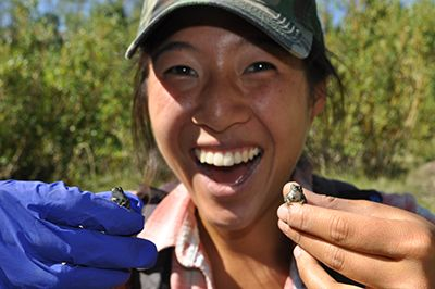Image of a volunteer holding an amphibian.